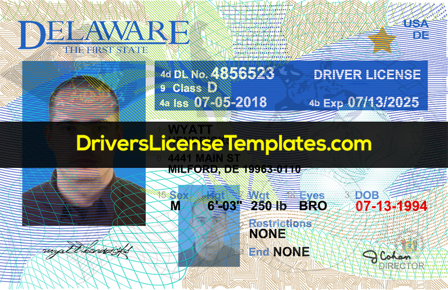 Delaware Drivers License Front New PSD template