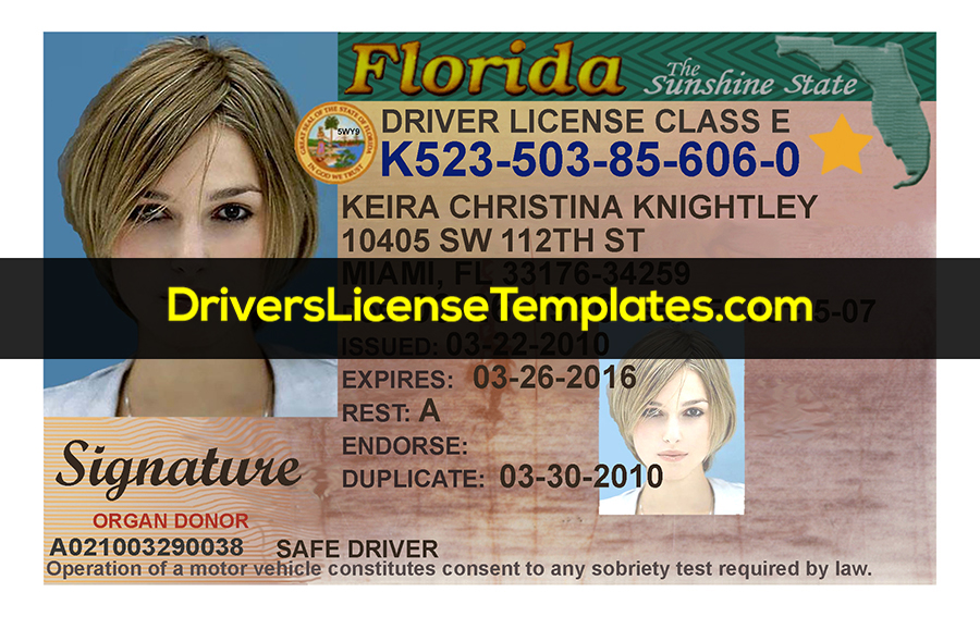 Florida Drivers License Front PSD template