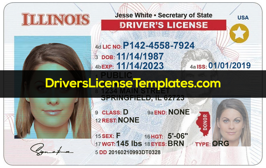 Illinois Drivers License Template New