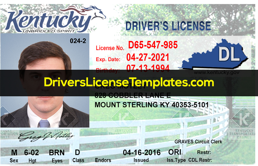 Kentucky Driver License psd template with hourse