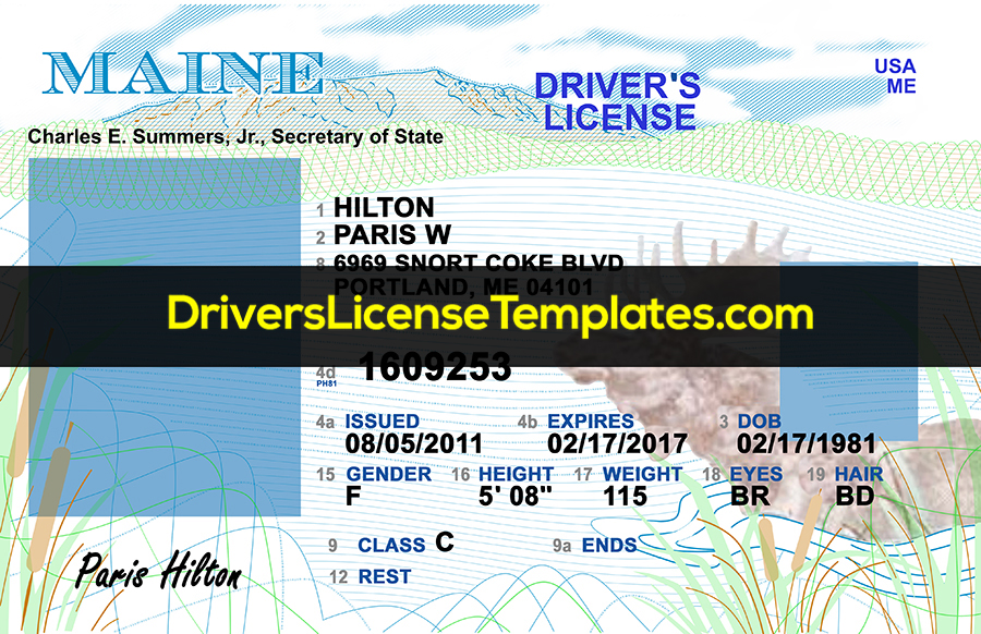 Maine Drivers License Front PSD template