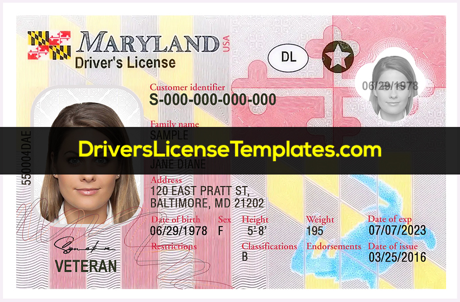 Maryland Drivers License Front New PSD template