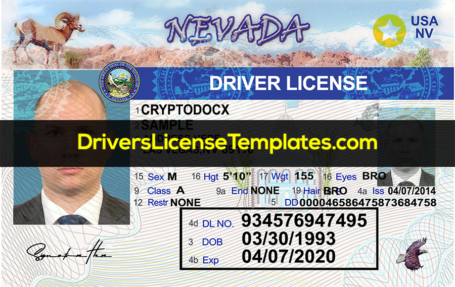 Nevada Driver License Template Front