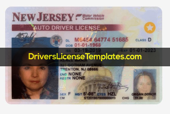 New Jersey Drivers License template psd new real fake Download