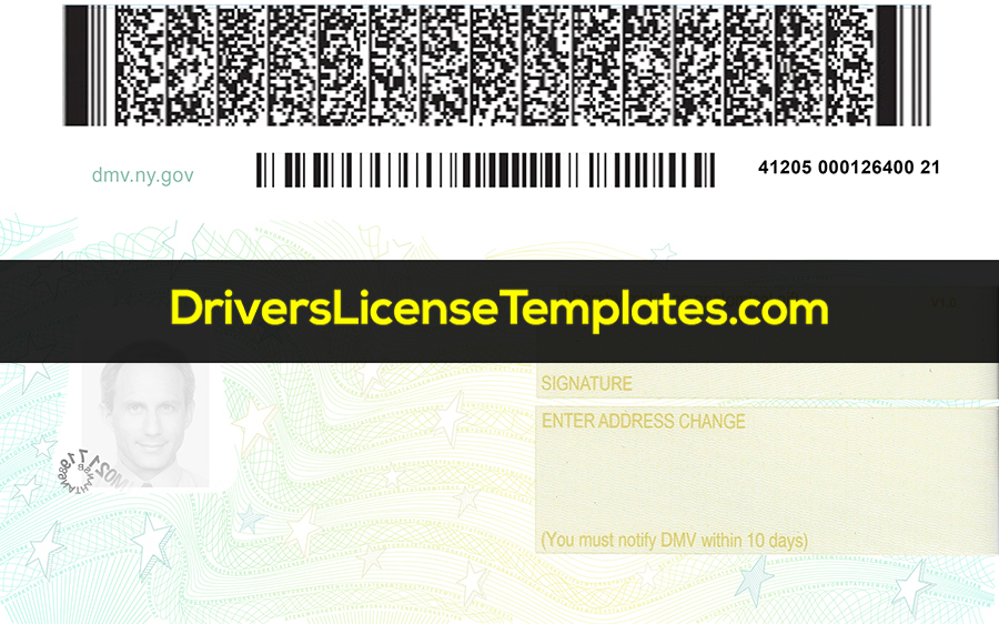 New York Drivers License Back New PSD template