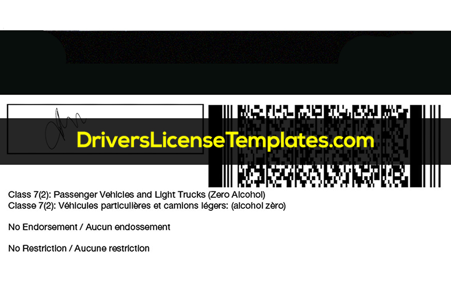 Ontario Drivers License Template Back